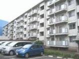 足立区西新井本町5丁目のマンションの画像