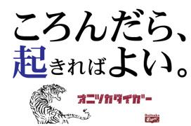 TIGERの画像2