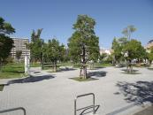 高須東公園さくらの広場