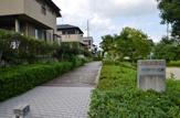 ヤマボウシ公園