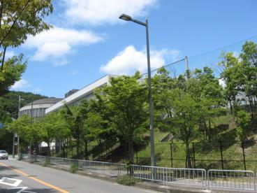 薬科 大学 大阪