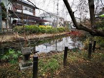 池 ね 公園 が つり