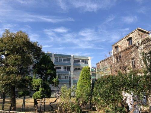 学園 中学校 成城